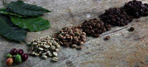 L'Artisanes thés cafés barista torréfacteur de cafés de Spécialités