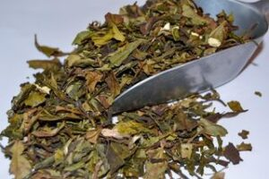 Thé Vert de Chine parfumé Bio Cerise Fleur de Cerisier Jasmin Orchidee Rose par L'Artisanes Thés Cafés à Saint-Quentin